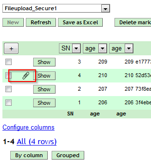 Screenshot of a file attachment in the Advanced Submit Server